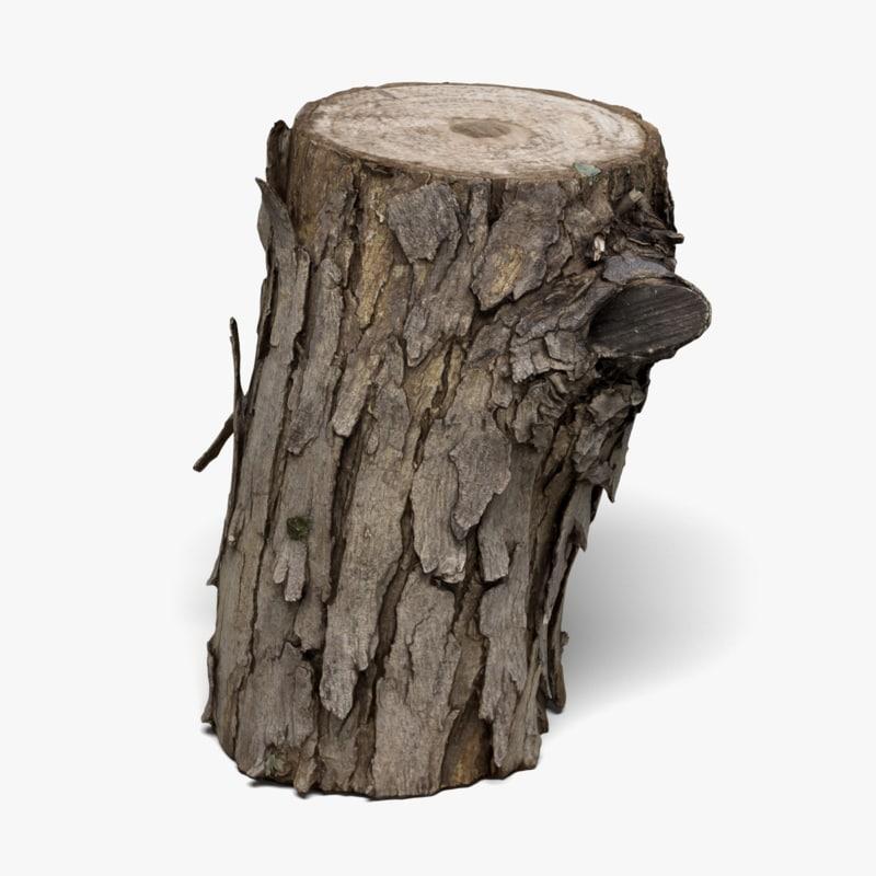Wood Log (3D Scan)
