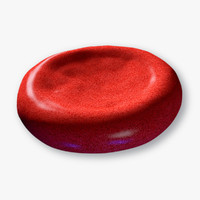 3D blood cell model