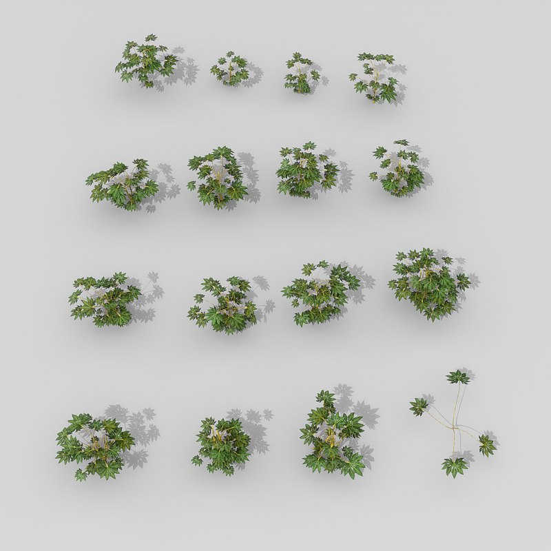3D small shrubs setting model