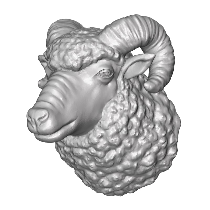 ram head curly 3D model