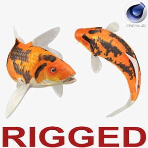 koi fish rigged 3D model