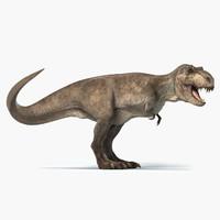 3D t-rex rigged tyrannosaurus rex model