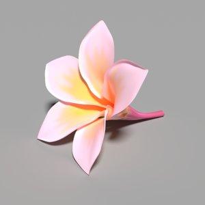 kamboja flower frangipani 3D
