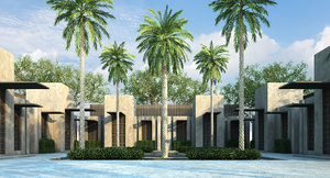 3D model phoenix dactylifera palm