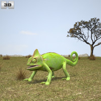 veiled chameleon 3D model