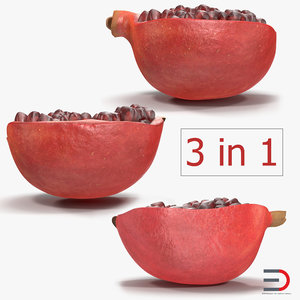 sliced pomegranate 2 3D model