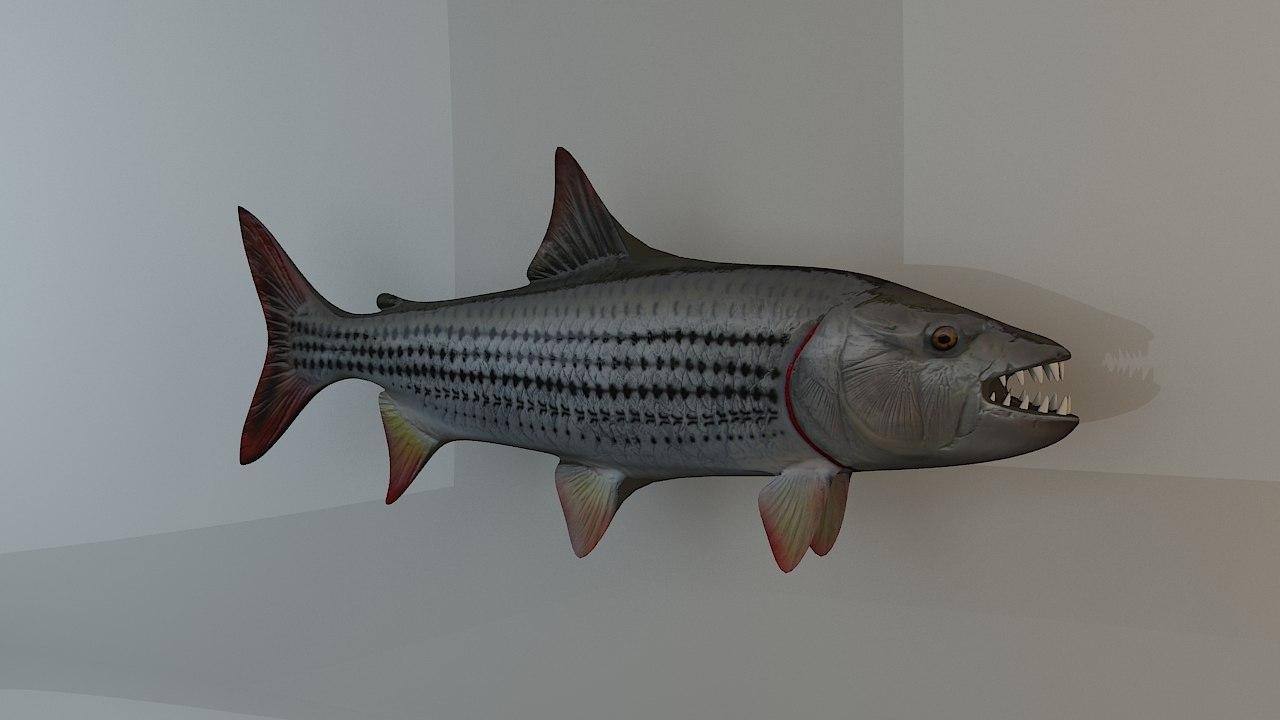 3D tiger fish