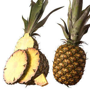 realistic pineapple 3D model