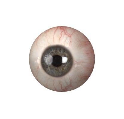 3D eyes rigged