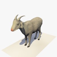 3D goat eating rigged animal model