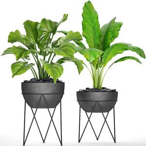 3D model plants pot
