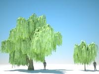 3D model trees arch gpu