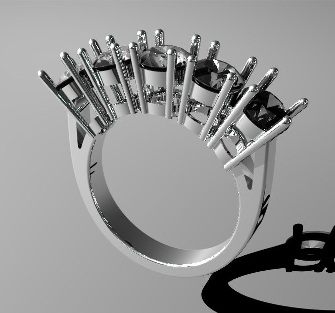 riviere ring model