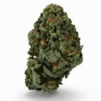 Cannabis Bud 06