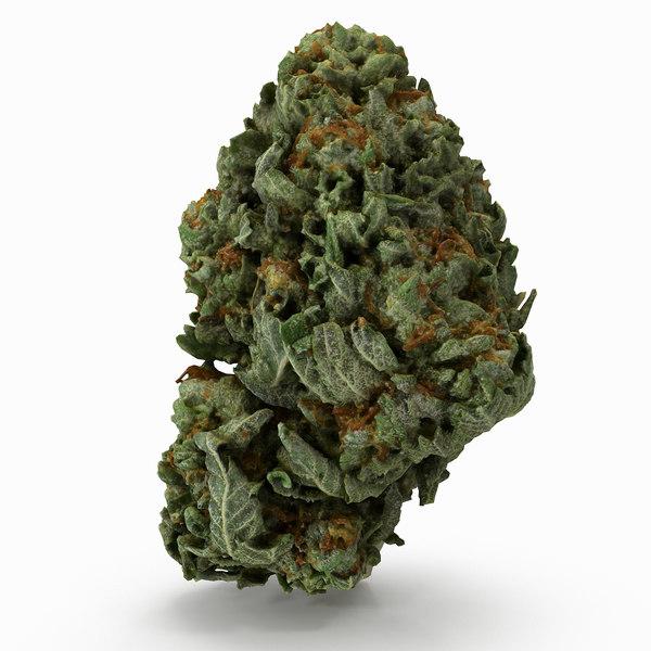 cannabis bud 3D model