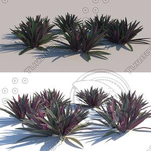 3D mosus cradle species