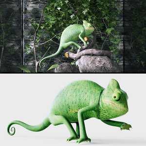yemen chameleon 3D