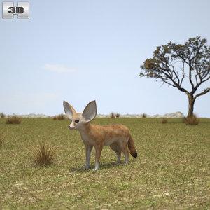 3D fennec fox