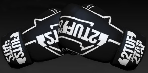 3D model boxing gloves 2tuf2tap matrix