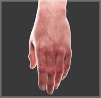 3D hand cg