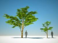 trees arch gpu model