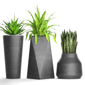 3D plants pot