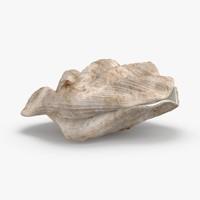 3D clam-shells---shell-03 model