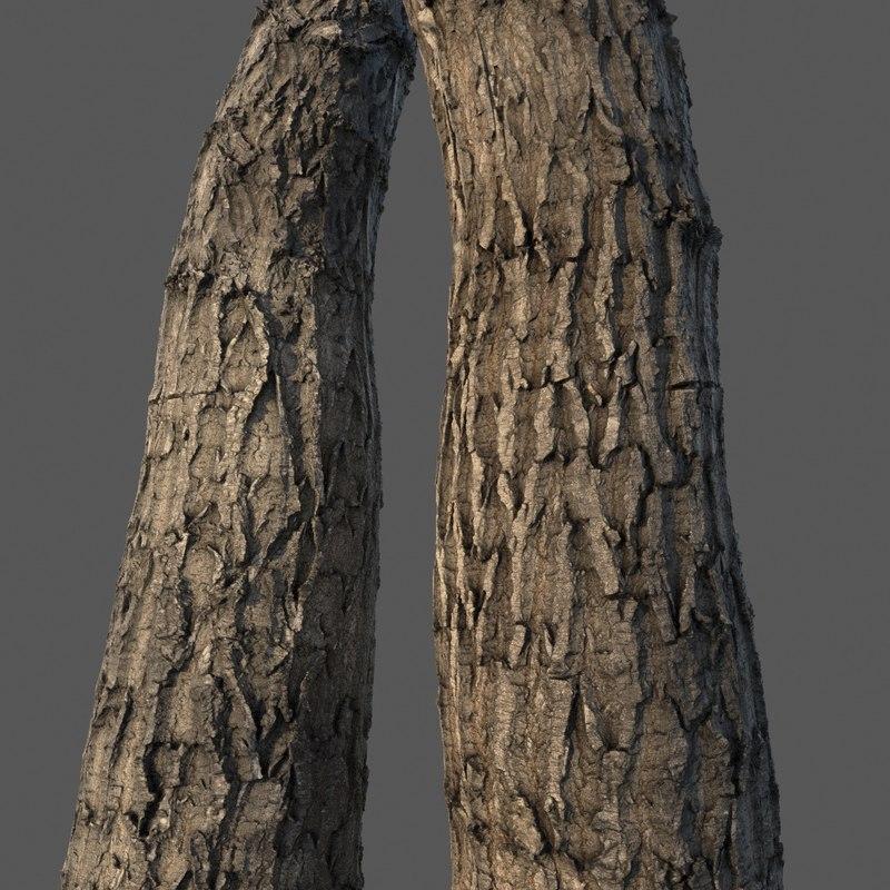 tree bark 4k 3D