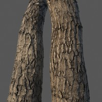 Wood bark Vray material (seamless textures 4k)
