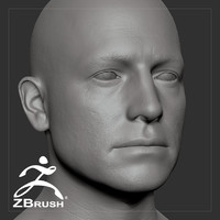 average caucasian male head 3D model