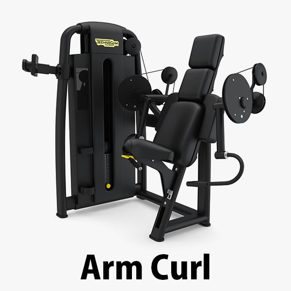 3D - sp arm curl