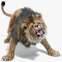 Lion 2 Animated, Fur, Two Colors 3d