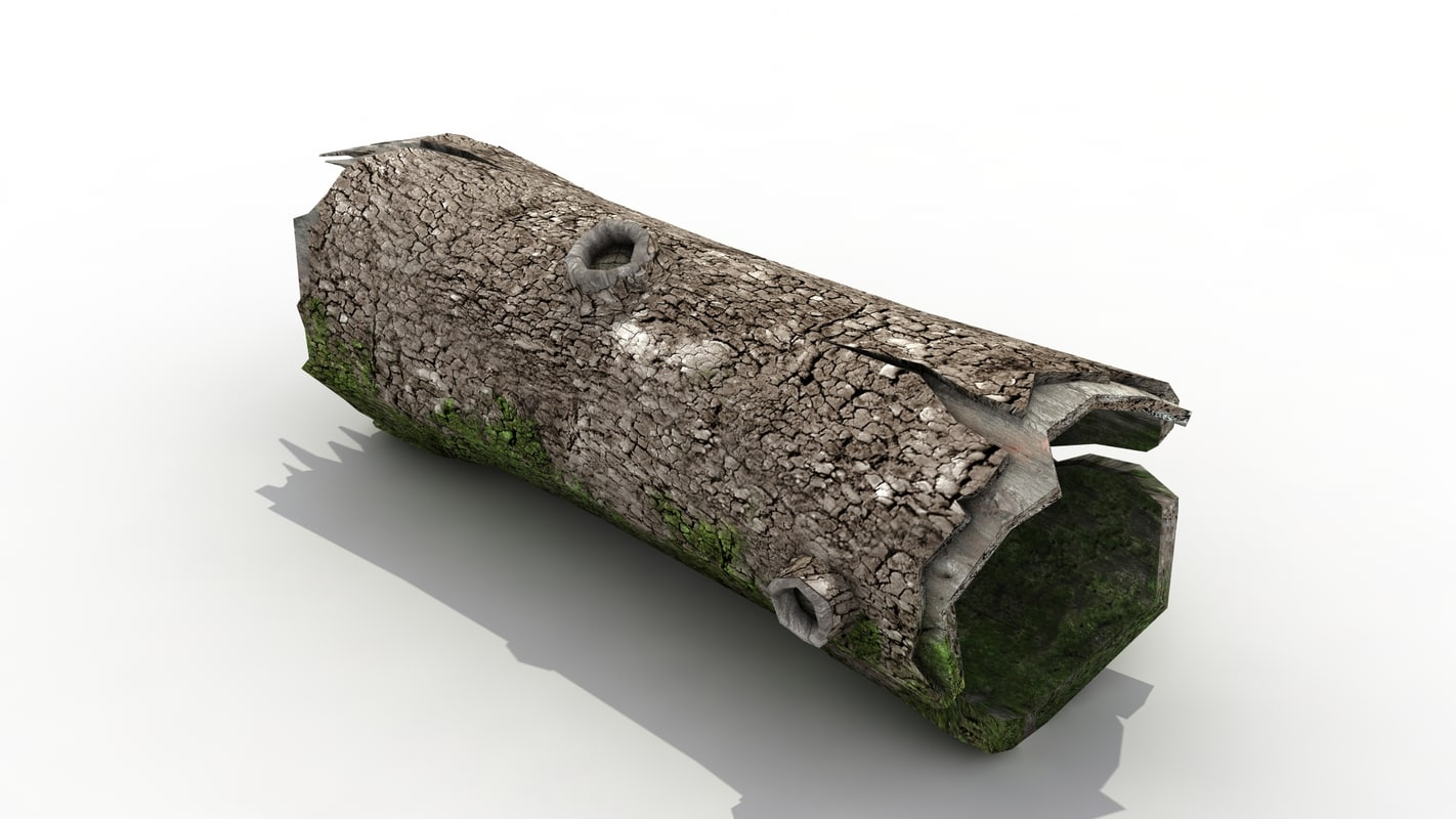 3D old pine tree trunk