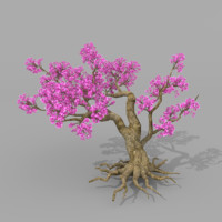 peach blossom trees model