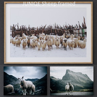 juniqe sheep framed 3D model