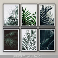 JUNIQE Tropical Set-01 Framed