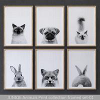 JUNIQE Animals Print collection framed set-01