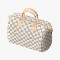 Louis Vuitton Speedy Bag Checker