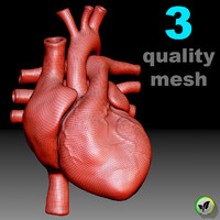heart 3 meshes 3D model