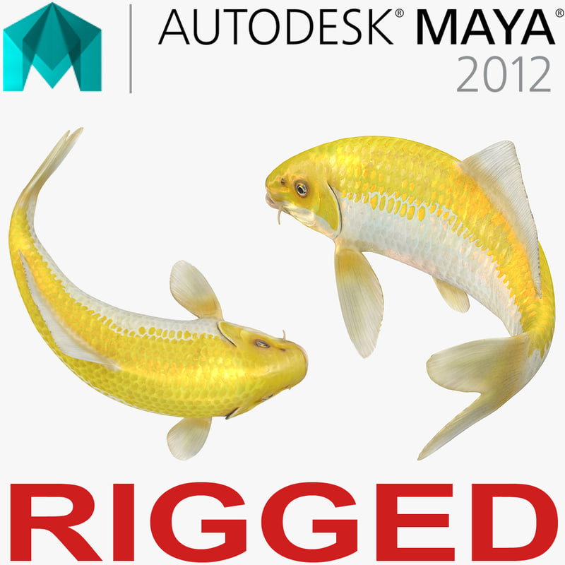 yellow koi ogon fish 3D model