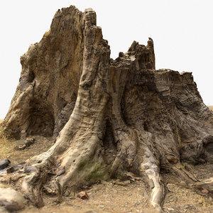 3D old tree stump