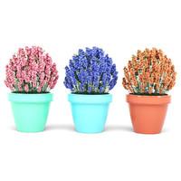 3D garden plant