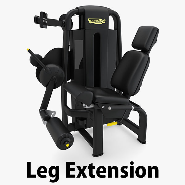 3D model - sp leg extension