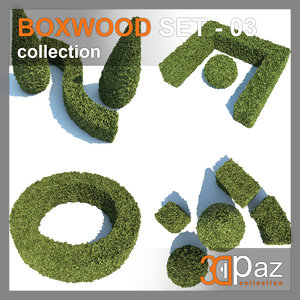 boxwood - set-3 3D model