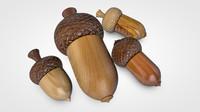 wooden acorn 3D
