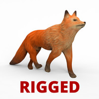 Fox Rigged Low Poly Cartoon Fox