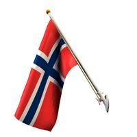 flag 25 pole 3D