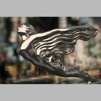 cadillac hood_ornament