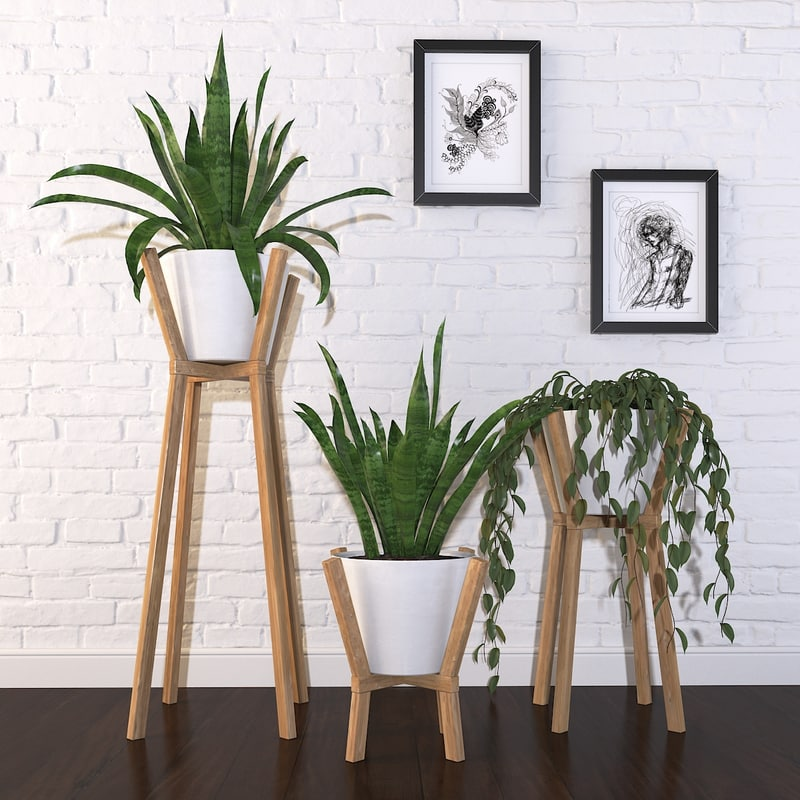 plant - set 1 3D
