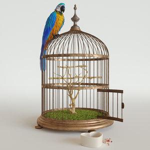 3D parrot ara model